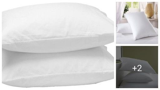 Collective Comfy Voguish Polyester Solid Pillows